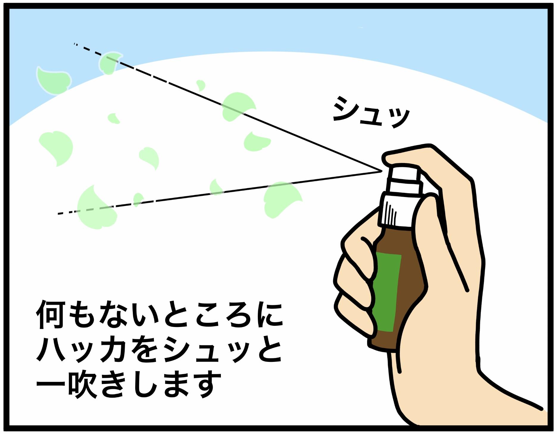 中島のハッカ油マスクスプレーの使い方1